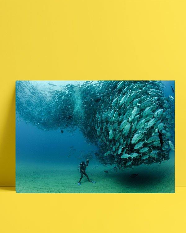 Balıklar denizaltı posteri al