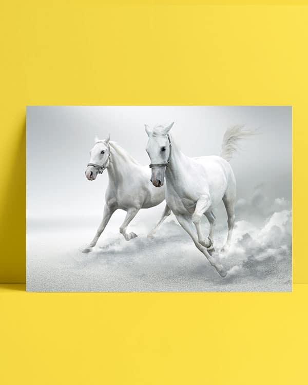 kosan-beyaz-atlar-afis-satin-al