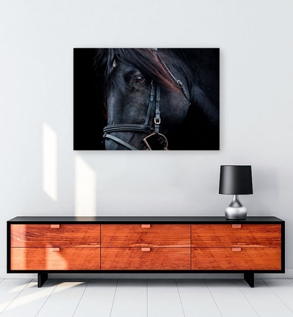 siyah-at-portre-kanvas-tablo-satin-al