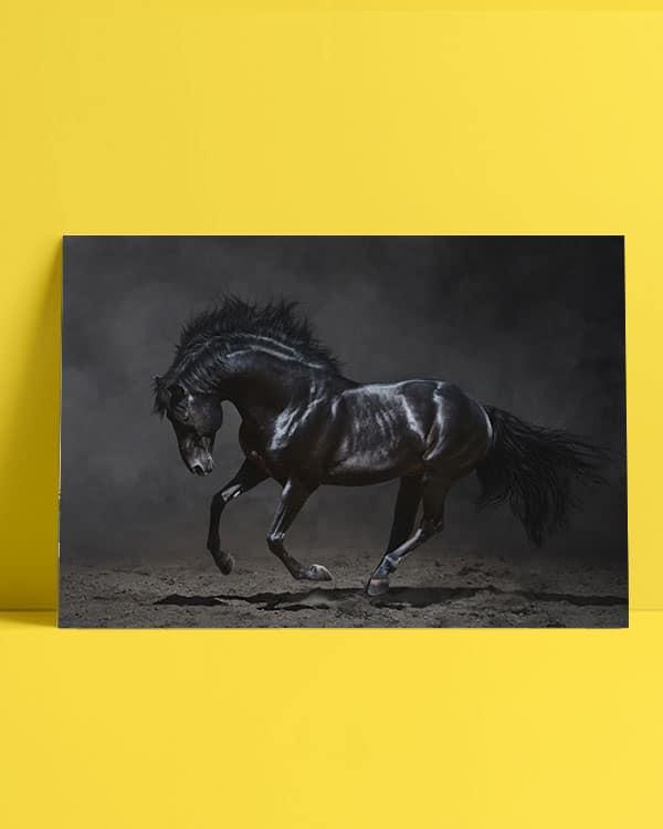 siyah-at-poster-afis-al