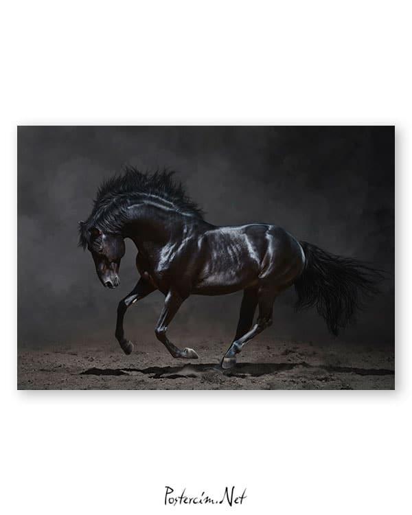 siyah-at-poster-satin-al