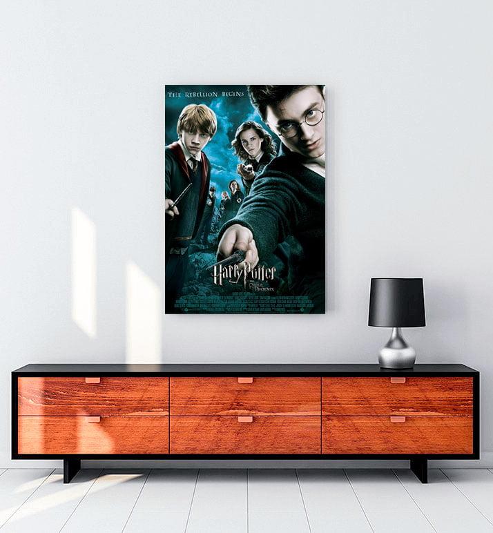 Harry Potter ve Felsefe Taşı Kanvas Tablo