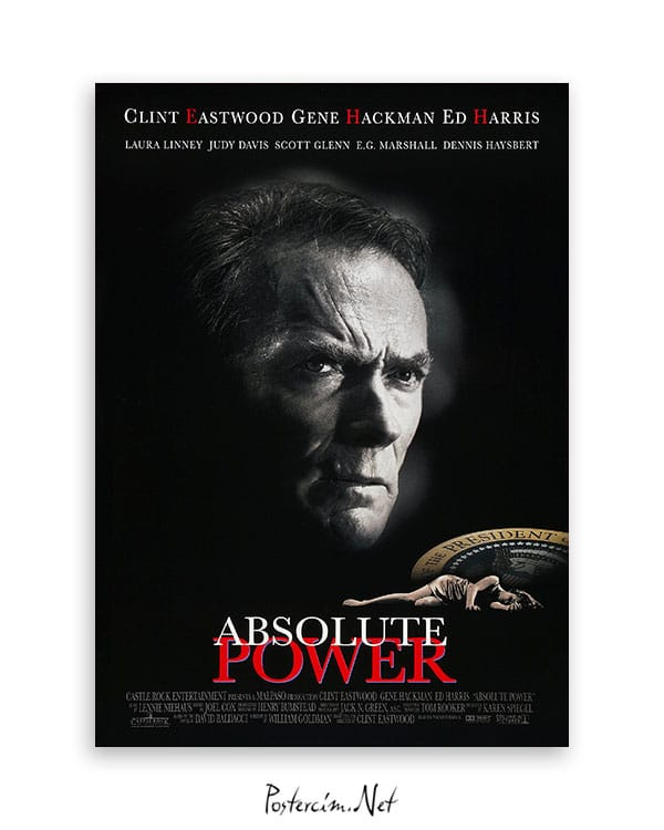 Absolute Power afiş