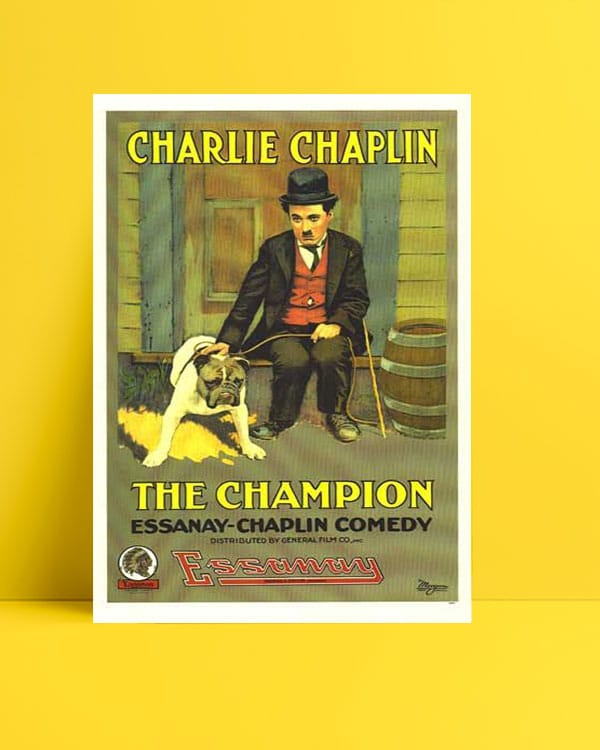 The Champion poster