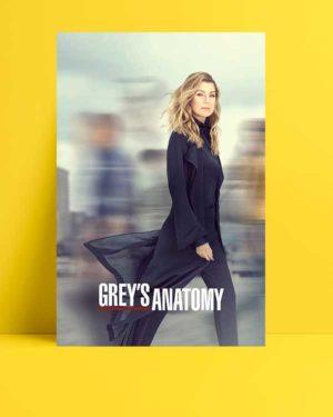 Grey's Anatomy afişi