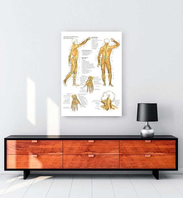 Kas ve Kemik Sistemi 2 kanvas tablo