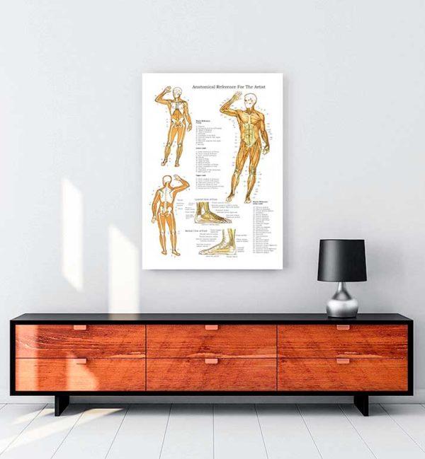 Kas ve Kemik Sistemi kanvas tablo