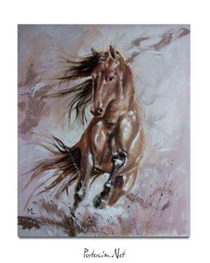 Monika Luniak - Atların Dansı posteri