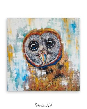 Baykuş Portresi poster