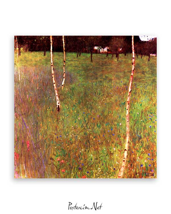 Beech Trees and Farmhouse poster