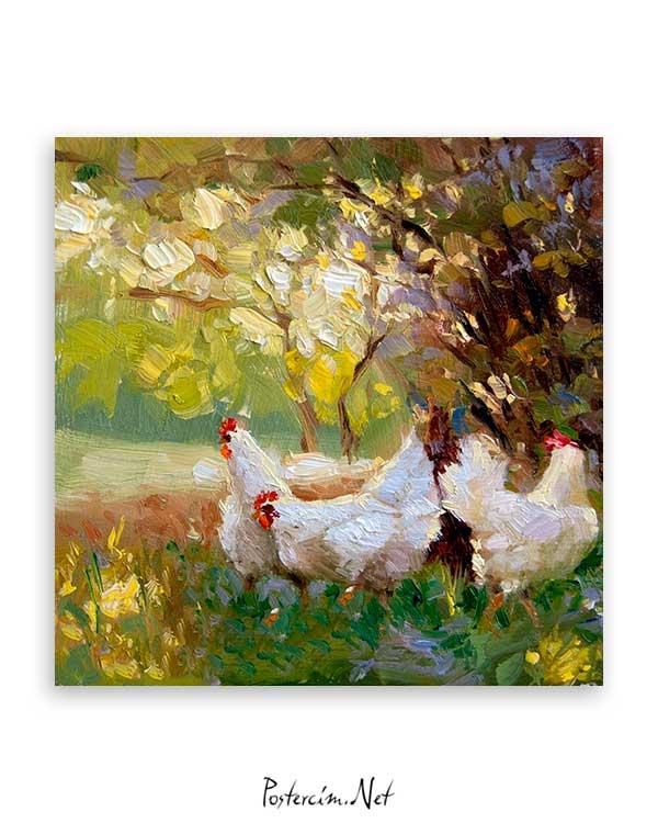 Üç Tavuk poster