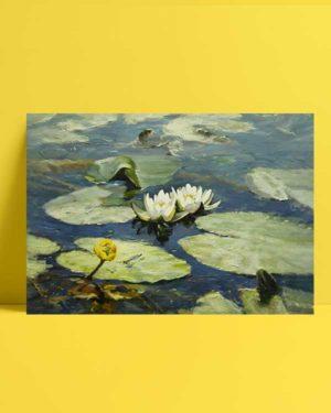 Beyaz Nilüfer afiş