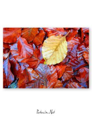 Wet Leaf poster