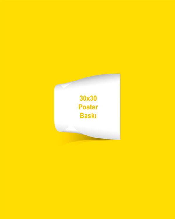 30x30 cm kuşe kağıt poster baskı