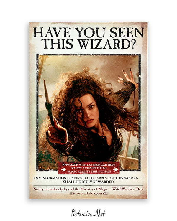 Harry Potter Wizard Bellatrix film posteri