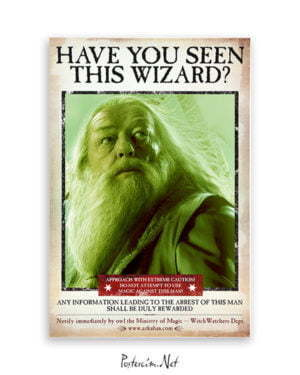Harry Potter Wizard Dubledor film posteri