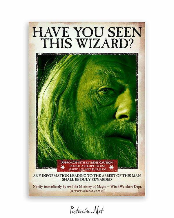Harry Potter Wizard Dubledor film posteri