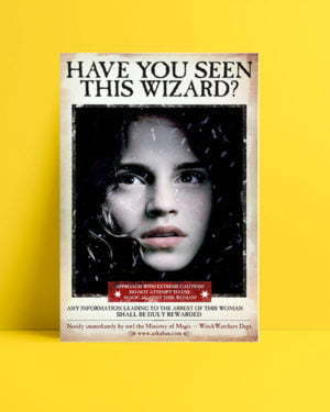 Harry Potter Wizard Harmony film afişi