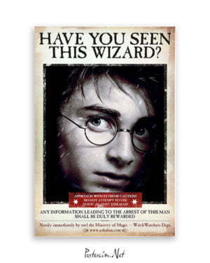 Harry Potter Wizard Harry film posteri