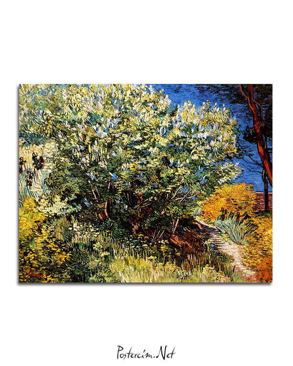 Vincent-Van-Gogh-Bush-of-lilac-poster