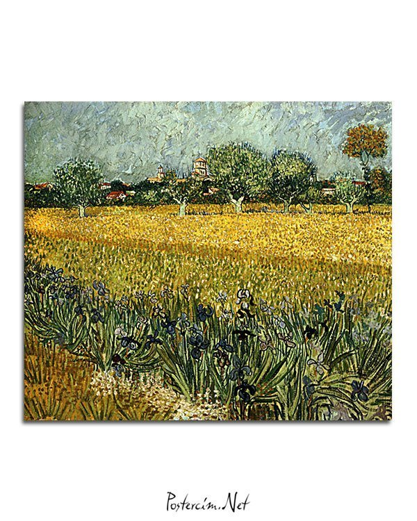 Vincent Van Gogh Champ de fleurs près d'Arles poster al