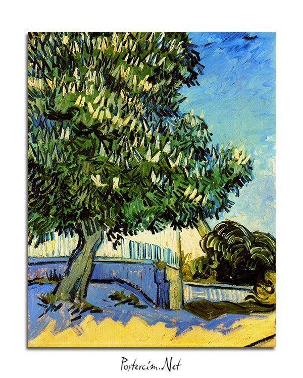 Vincent Van Gogh Chestnut trees in flowers poster al