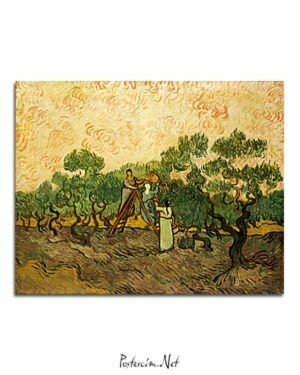 Vincent Van Gogh Femmes récoltant des olives poster al