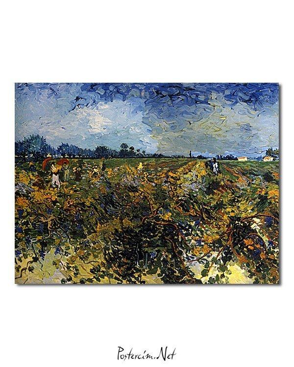 Vincent Van Gogh La Vigne verte poster