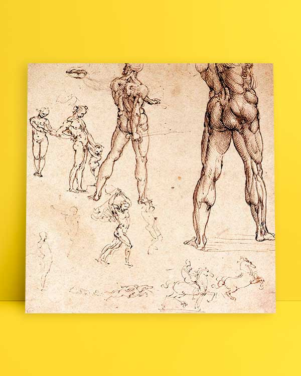 Anatomic Drawing afiş