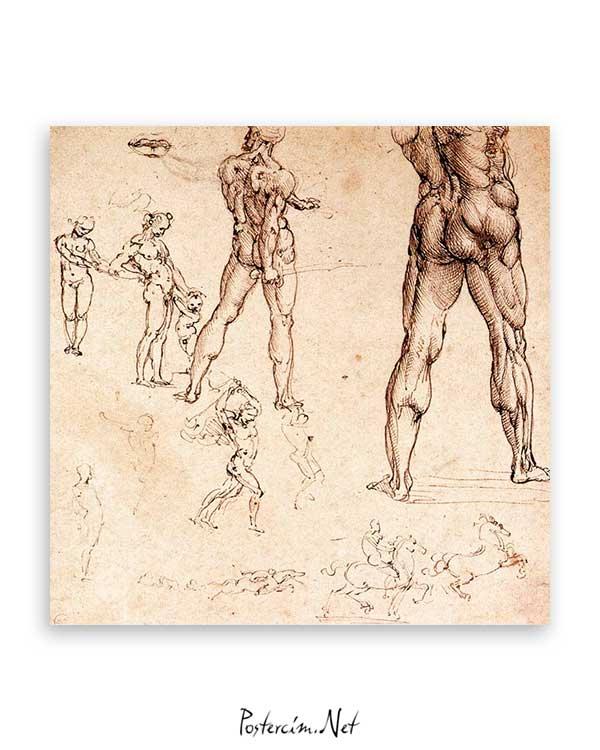 Anatomic Drawing poster