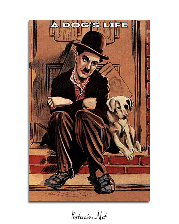 A dog's life afişi