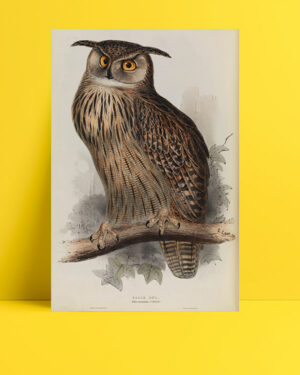 Eagle Owl posteri