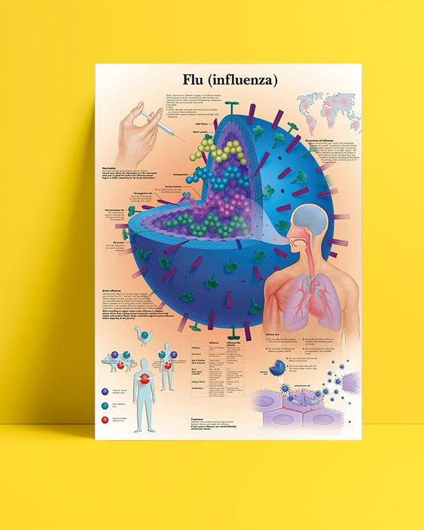 Flu (influenza) posteri