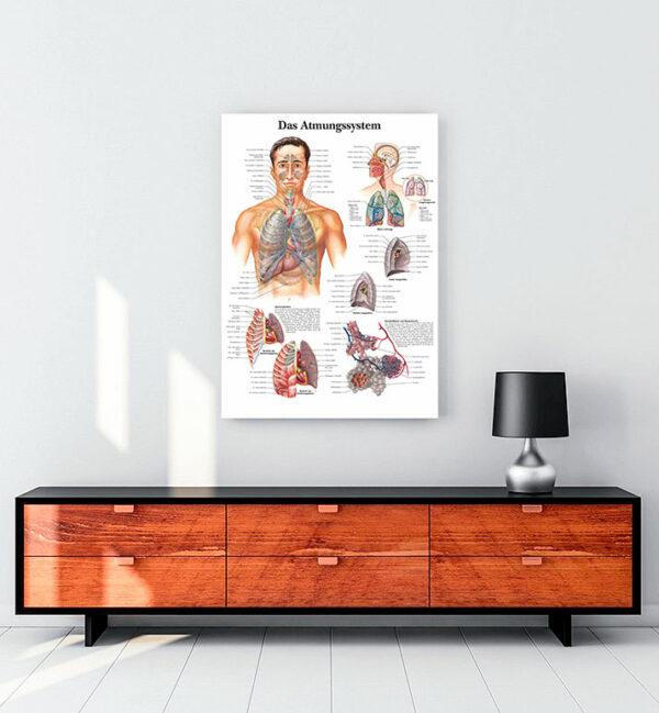 Solunum Sistemi kanvas tablo