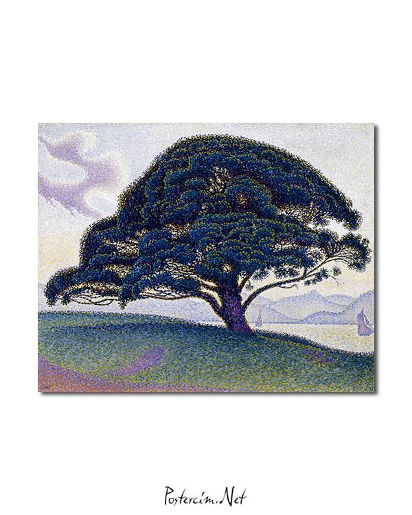Bonaventure-ağacı-afisi