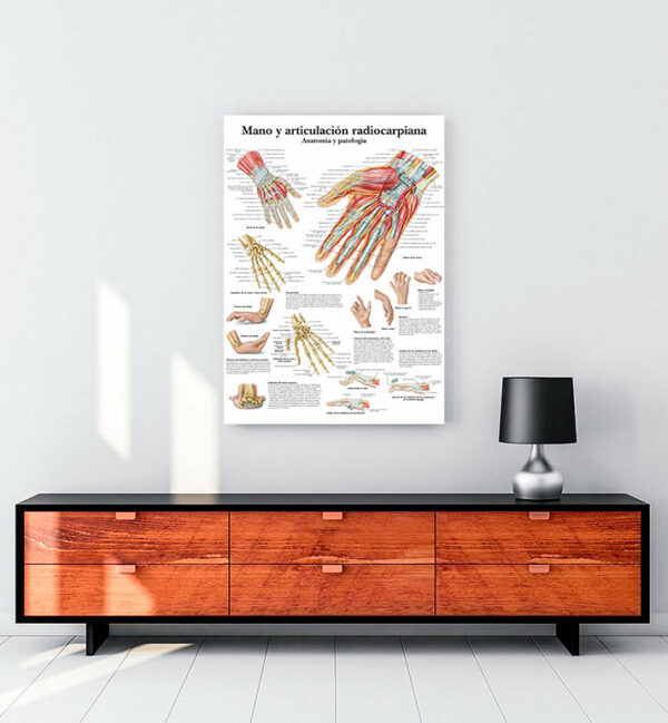 El-ve-radiocarpal-eklem-anatomisi-kanvas-tablo
