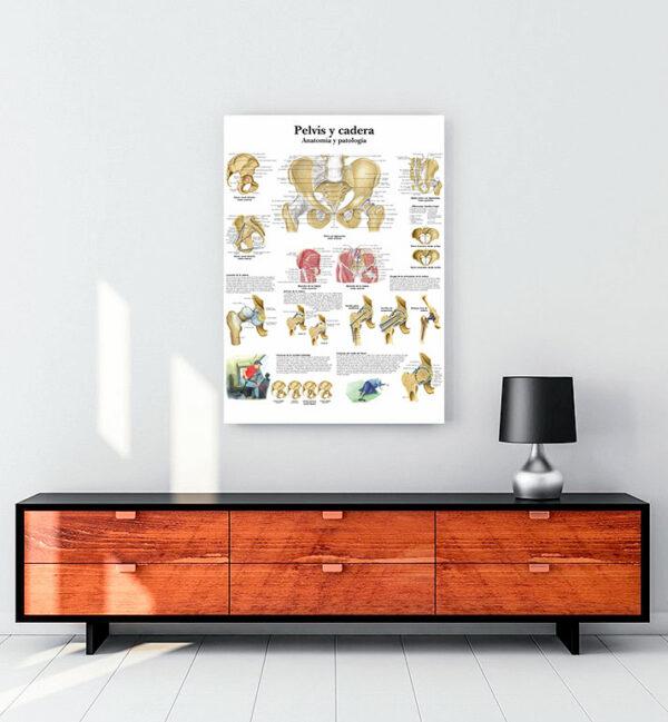 Pelvis-ve-kalça-anatomisi-kanvas-tablo