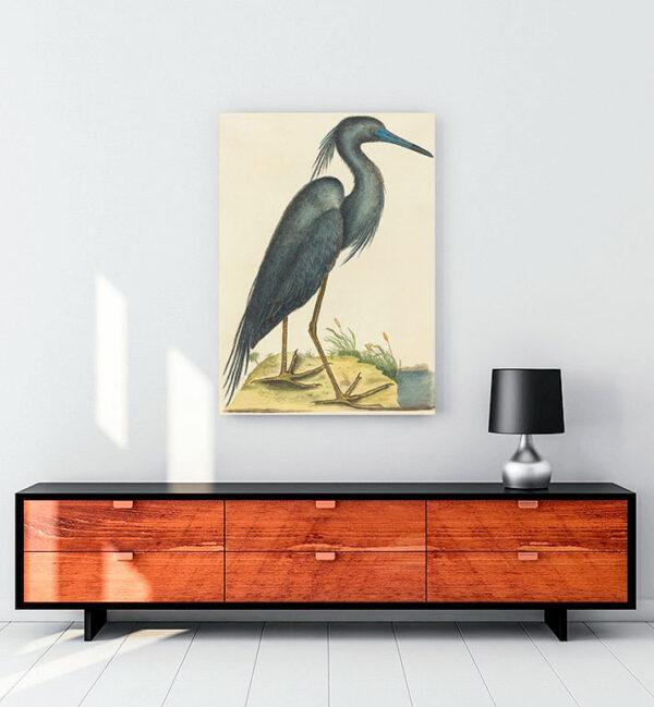 mavi balıkçıl kanvas tablo