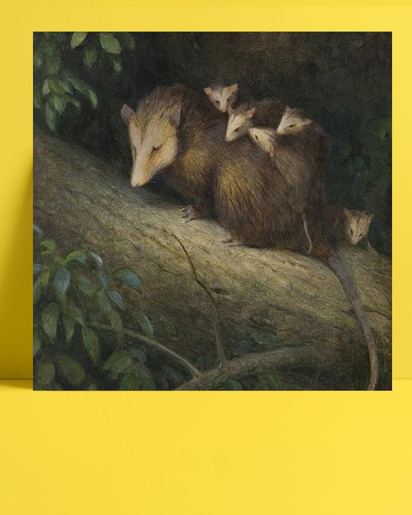 keseli-sıçan-ve-yavruları-posteri