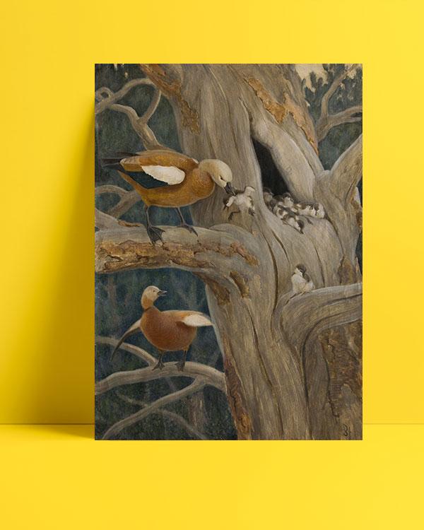 kızılkanatlı-ördekler-posteri