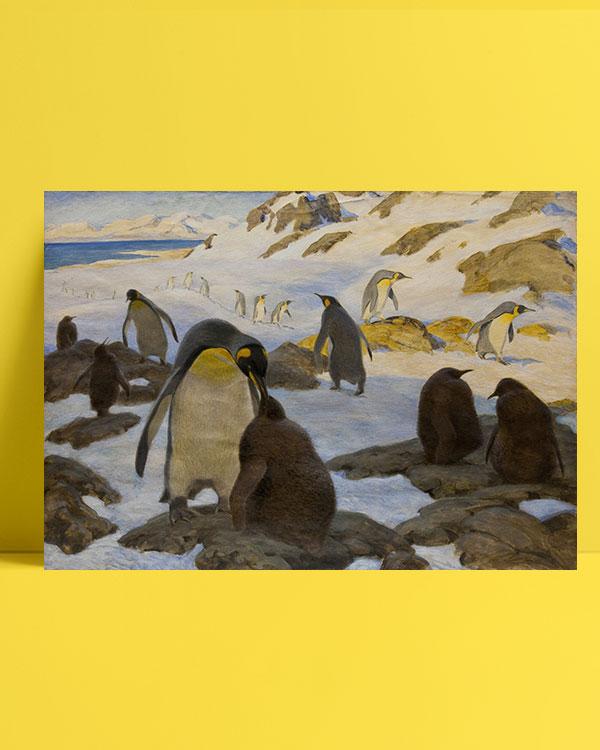 penguen-kolonisi-posteri