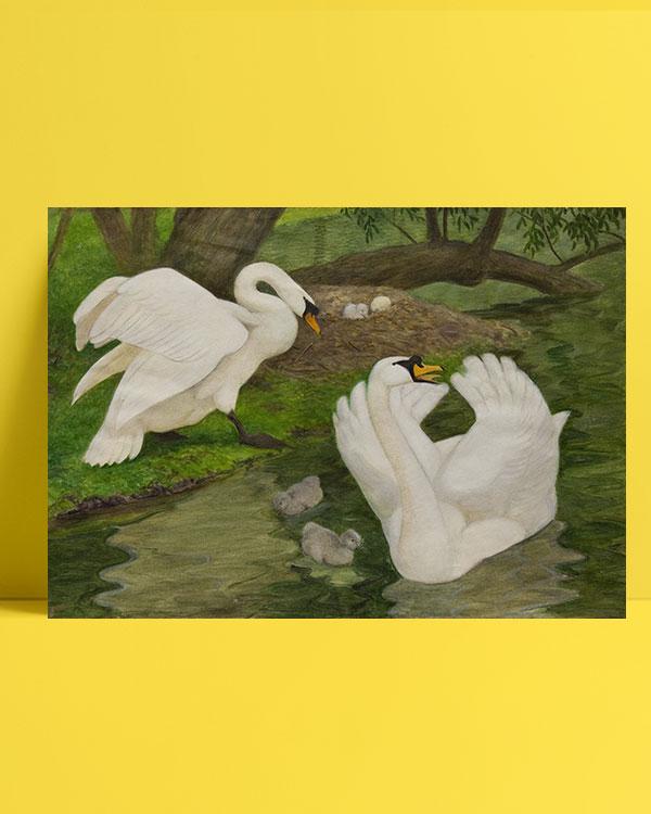 sessiz-kuğular-posteri